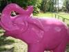 roze-olifant